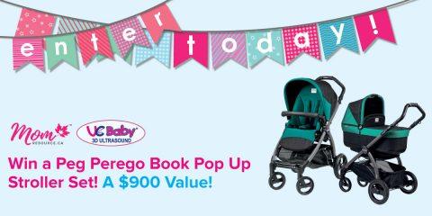 win baby stroller UC BABY