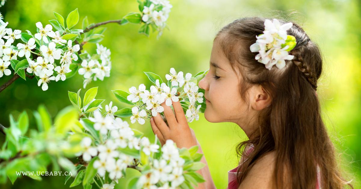 happy scent, aromatherapy, jasmine