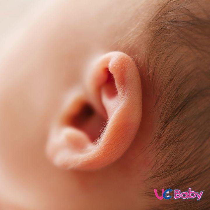 Blog UCBABY Newborn Photography ideas (2)
