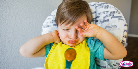 Picky Eaters Toddler Development